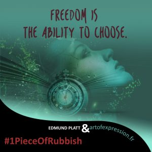 Freedom is the ability to choose - EDDIE PLATT